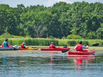 Guided Kayaking and Camping Trips